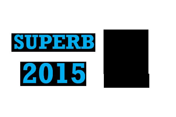 Skoda Superb Kombi 2015-courant Sun Strip